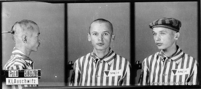 What I Saw in Auschwitz