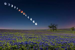 The Blood Moon Sequence of April 14-15, 2014