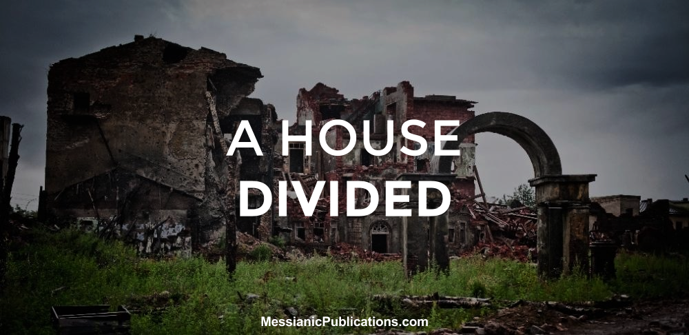 House Divided | The Barking Fox