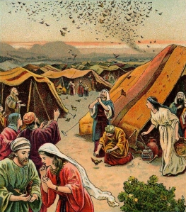 The Giving of the Quail.  Illustration from a Bible card published by the Providence Lithograph Company, 1901.
