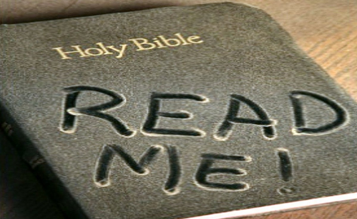 Weekly Bible Reading for October 3-9: Noach(Rest)
