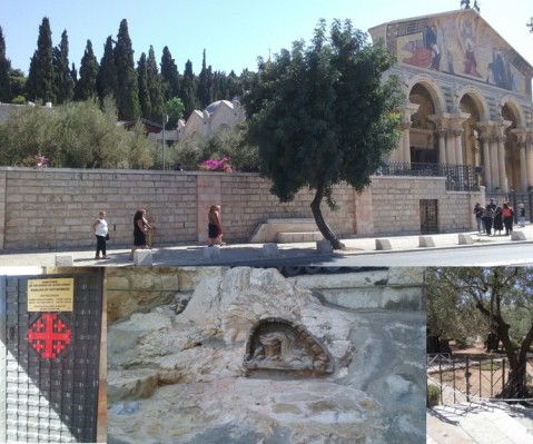 The Church of All Nations, traditional site of the Garden of Gethsemane.