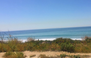 bfb161106-pacific-coast-highway