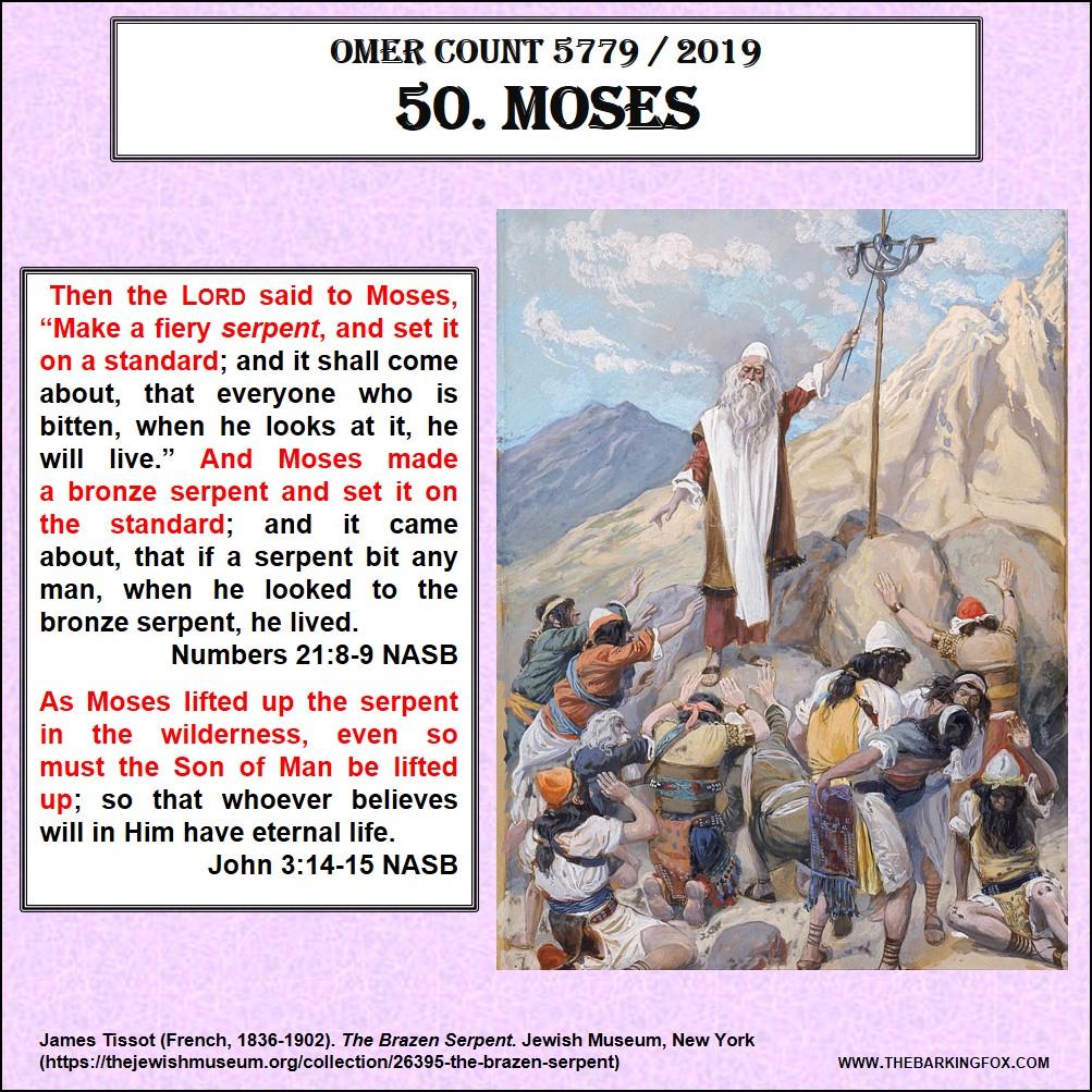 The Barking Fox | Examining Scripture from a Hebraic