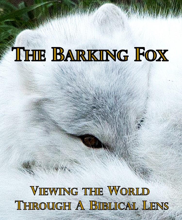 The Barking Fox is onBrighteon!