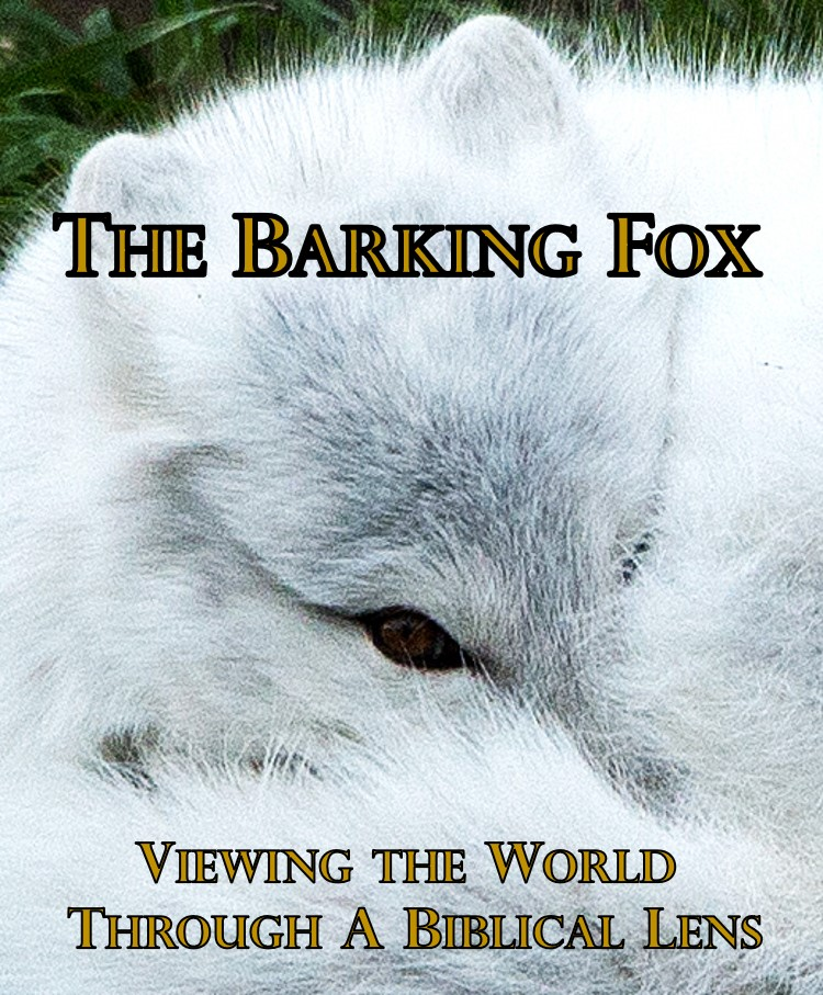Videos by The Barking Fox on Brighteon